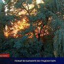 Голем пожар во Градскиот парк, се запалија бараките на поранешниот Суд за прекршоци