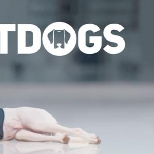 """Запознајте ги """"паметните кучиња"""", првите кои се обучени да ги тренираат луѓето"""