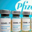 """Израел ќе ѝ даде на Палестинската управа 1,2 милиони дози вакцини """"Фајзер"""""""