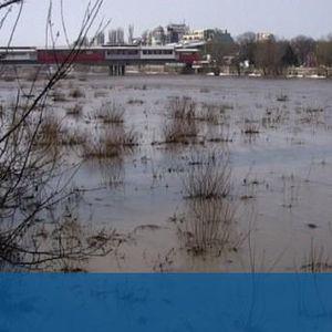 ВиК след отровата: Няма опасност за питейната вода в Пловдив
