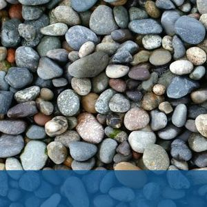 Японски художник кара камъните да оживеят