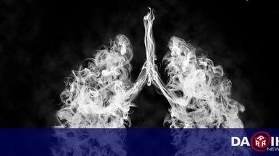 Проф. Борислав Георгиев: Вредата от цигарите е върху всички органи, рискът трябва да се намалява