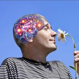 Што му се случува на мозокот кога се вљубуваме?