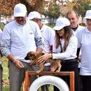 ЕВН волонтeрите го изградија првиот парк за миленичиња во Струмица