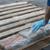 ОН: Највисоко ниво на производство на кокаин досега во светот
