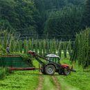 На Германија без сезонски работници ѝ се заканува недостиг од овошје и зеленчук