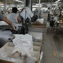 Текстилците и чевларите преку дигитална платформа ќе освојуваат нови пазари