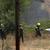 Локализиран пожарот од страна на Пинтија