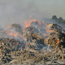 Кметът на община Раковски е сезирал Борисов за пожара в Шишманци