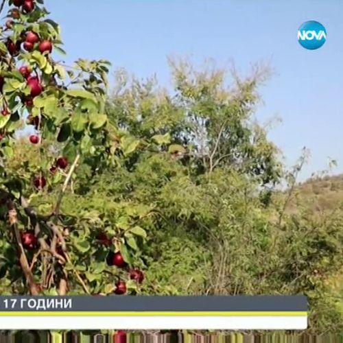 Земеделец на 17 години стана хит в социалните мрежи