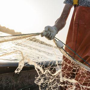 Рибарите очакват богат улов тази година