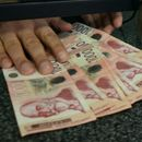 NBS kupila 60 miliona evra, kurs u ponedeljak 117,7365