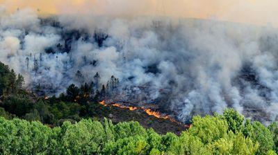Požar na Svetoj Gori delimično pod kontrolom
