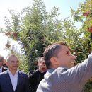 Овоштарите предвреме израдувани со 5,5 милиони евра