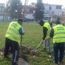 Карпош доби 200 нови дрвја за полесно да дише
