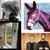5 албума от юли, които трябва да слушате