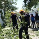 ФОТО: Големи штети од невремето во Преспа - Активирани сите владини и локални служби