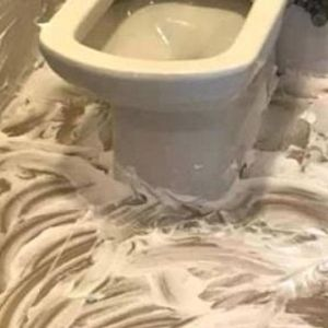 Жена откри бизарен трик - вака го чисти тоалетот