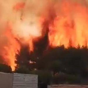Пожар беснее на Закинтос, се гаси со авиони, а зафати и куќи