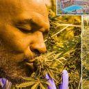 Мајк Тајсон ги повика Британците да ја легализираат марихуаната, тврди дека ќе се намали бројот на самоубиства