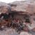 Повеќе од 115 мртви при верски судири во Мали