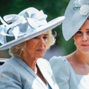 Членови на кралското семејство кои не се поднесуваат