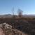 Гори трската во Калишта: Екологистите предупредувааат дека се чисти терен за нови градби