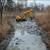 Нестручното и насилно чистење на езерцата во Градскиот парк е еколошка катастрофа