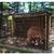 Штипската зоолошка како логор: Мечката се мачи со години