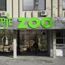 Бебе од редок вид на лемур се роди во Скопје ЗОО