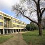 Ученик фрлил солзавец во училиште, четворица средношколци во болница