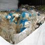 Директорот на Дрисла внесувал сомнителен отпад од Италија