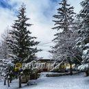 Снежна зимска идила на Галичник