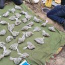 Запленети куршуми, марихуана, дигитални ваги, шприцови: Приведени двајца дилери во Велес