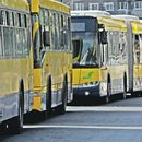 Autobusi 52, 53, 56 i 56L ponovo idu do Zelenog venca!
