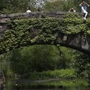 New York City can limit art vendors in popular parks: appeals court