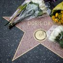 Doris Day's awards, animal artifacts haul in $3 million at auction