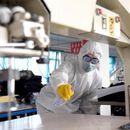 North Korea testing, quarantining for COVID-19, still says no cases: WHO representative