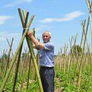 Одгледувањето грав на бамбусови прачки замре во Полошко, оти власта не ја поддржа иновацијата
