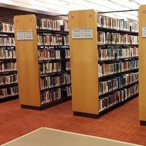 Битолската библиотека во Варшава учи како со ретки техники се заштитуваат уште поретки ракописи