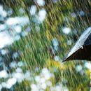 До вторник дожд и грмежи, со високи температури, од среда стабилно и суво време