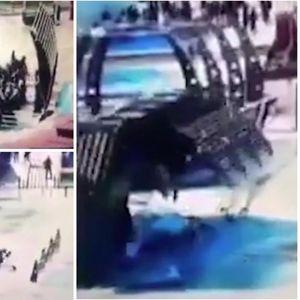 Снимен моментот кога траектот усмрти 100 луѓе: Во паника бегаа на едната страна од бродот, а кога се преврте Тигар ги однесе жртвите