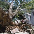 Силно невреме во Преспа -  уништени туристички кампови и земјоделски површини