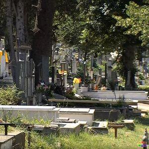 Ќе има ли крематориум во Македонија? Желби и идеја има, реализација нема