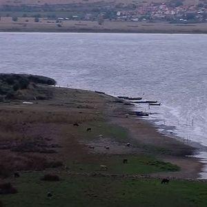 Преспанското езеро заминува пред очите на сите - Сител репортажа од местото каде се случува природниот феномен