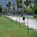 Град Скопје уреди нови зелени површини на повеќе локации