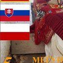 """Над 500 учесници ќе настапат на фолклорниот фестивал """"Св. Троица"""" во Долно Лисиче"""