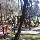 Продолжуваат активностите за дезинфекција и миење во парк-шумата Водно