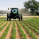 Вкупно 65.544 земјоделци аплицирале за субвенции