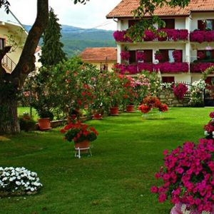 Цвеќиња, трева, украсни дрвја, фонтани, езерца - скопјани уживаат во убаво средени дворови